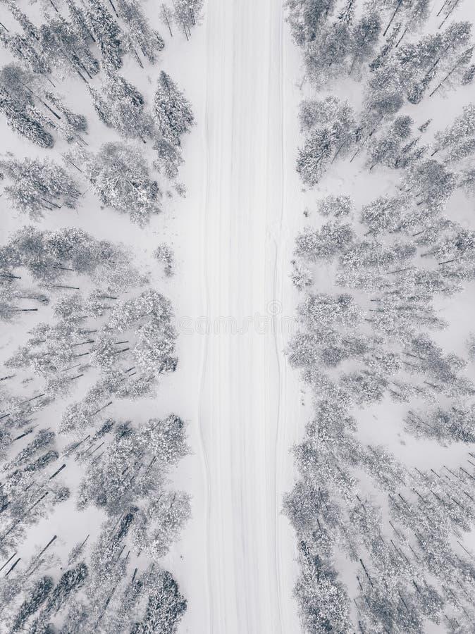 空中寄生虫视图用雪和路盖的冬天森林 免版税图库摄影