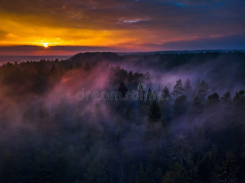 空中日出或日落与雾或薄雾在树梢 免版税库存照片
