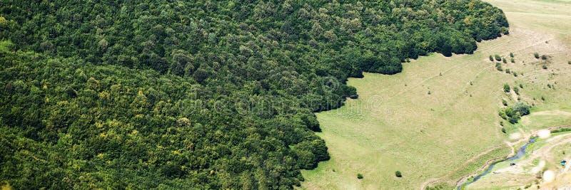 空中森林风景视图 库存图片