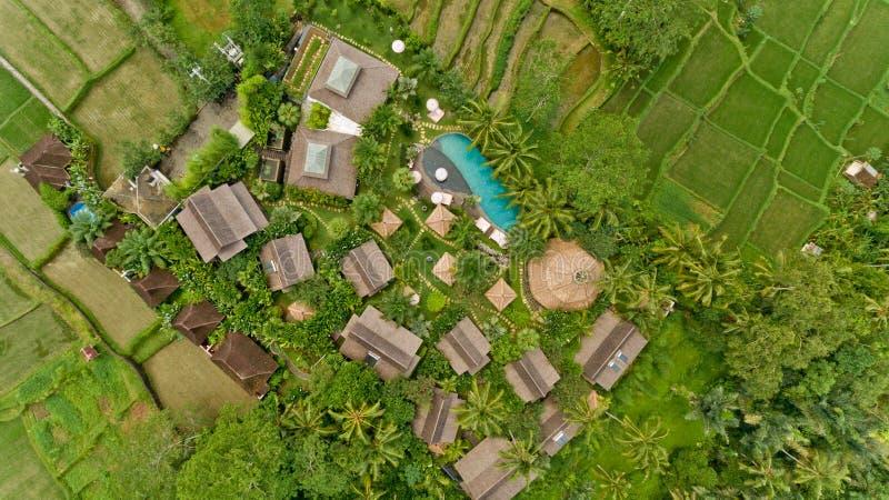 空中池游泳视图 库存照片