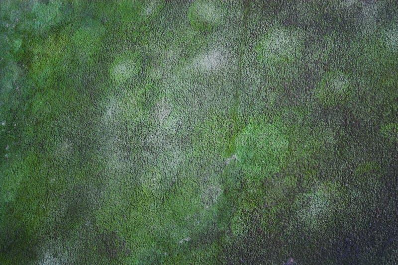 空中背景照片 免版税库存图片