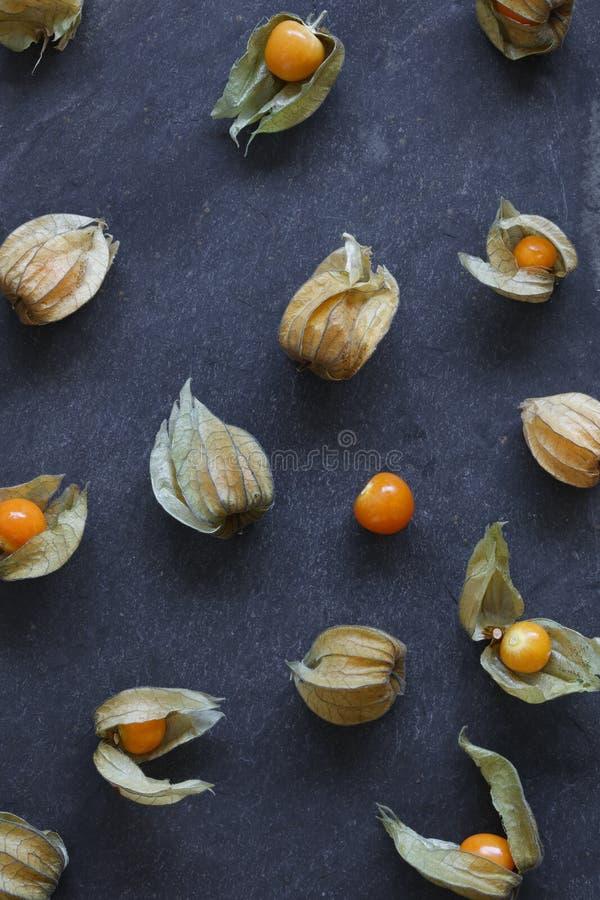 空泡果子,灯笼果的安排,在自然板岩 免版税图库摄影