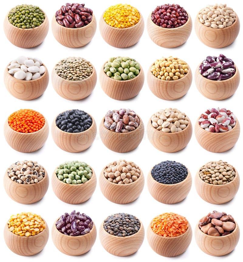 空白收集的豆类 库存照片