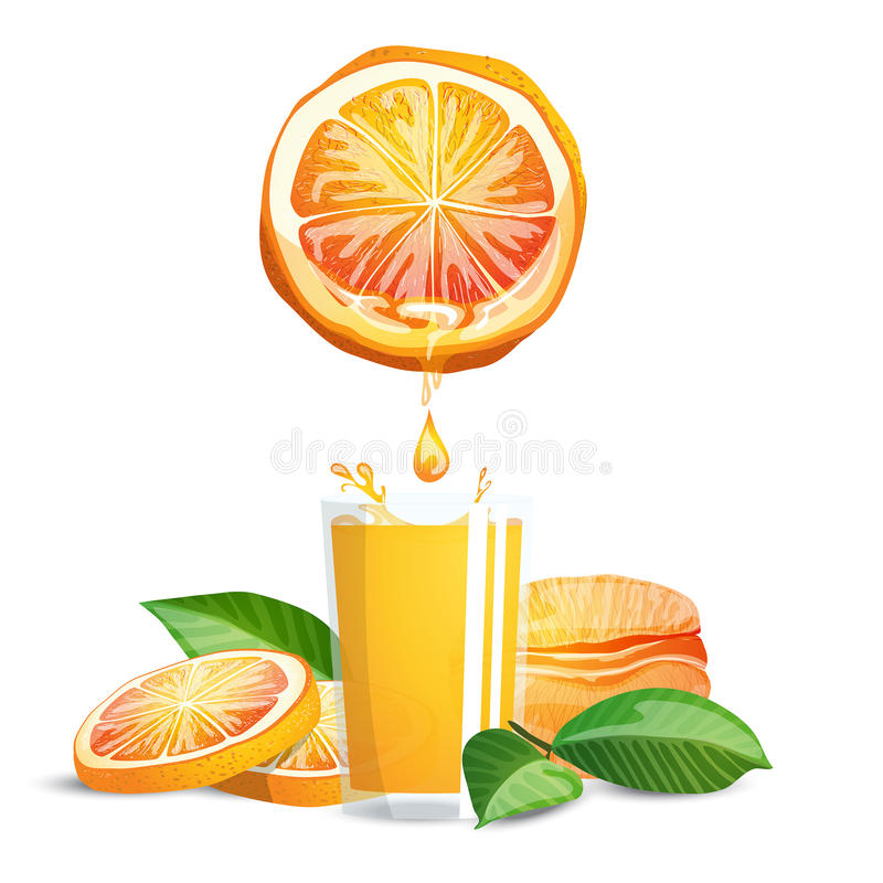 空白查出的汁液的桔子 皇族释放例证