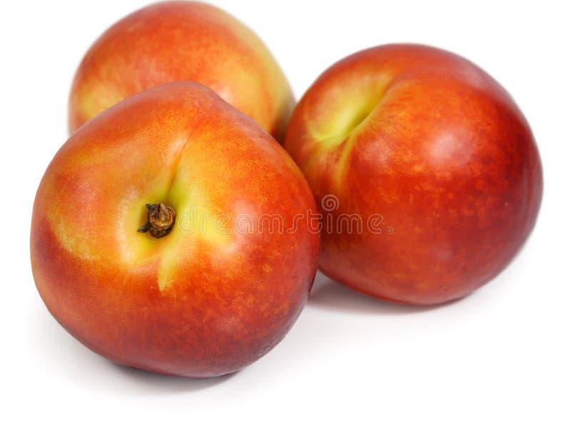 空白查出的油桃 免版税库存图片