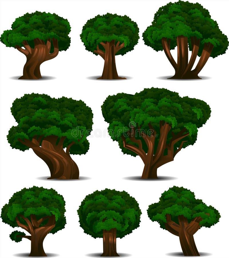 空白查出的结构树 库存例证