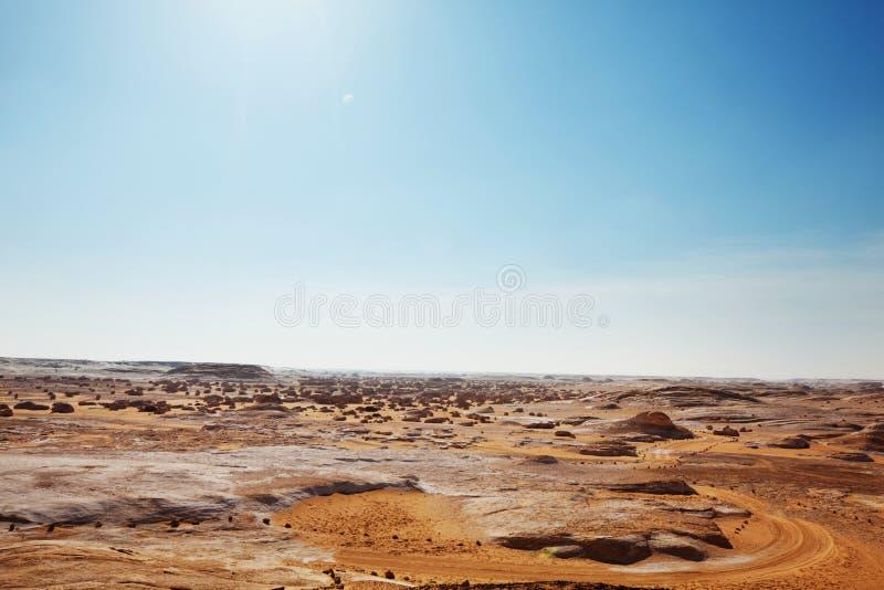 空白沙漠在埃及 免版税库存图片