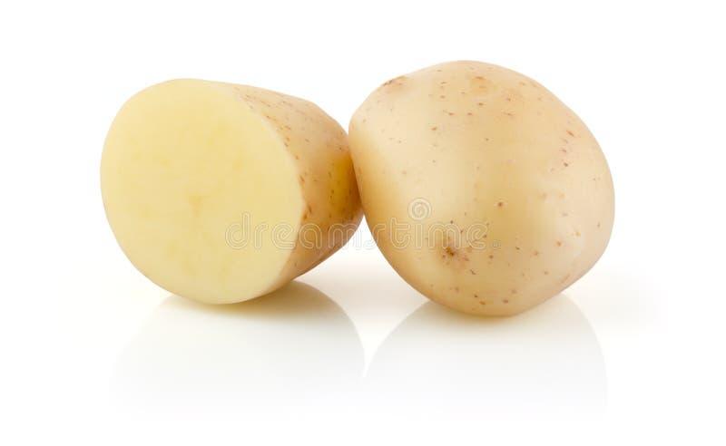 空白的土豆 免版税库存图片