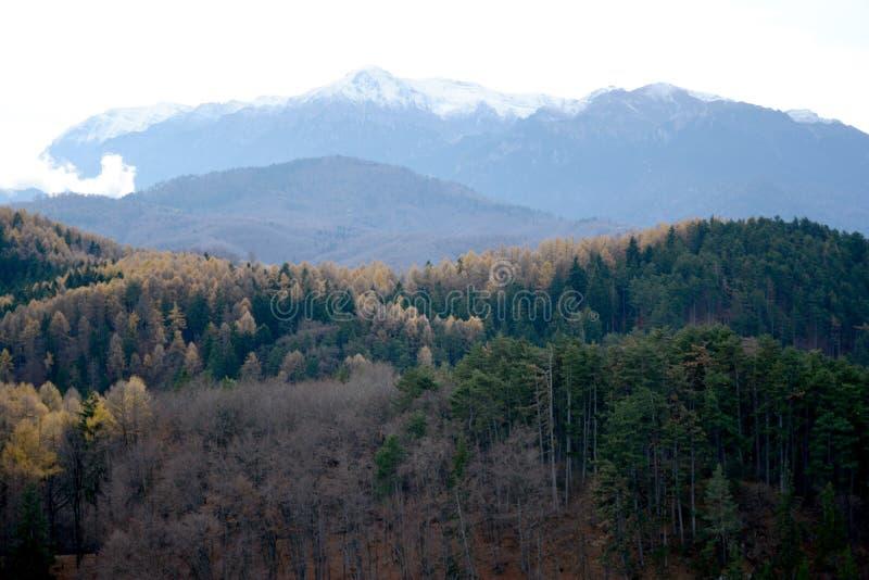 空白的山 库存图片