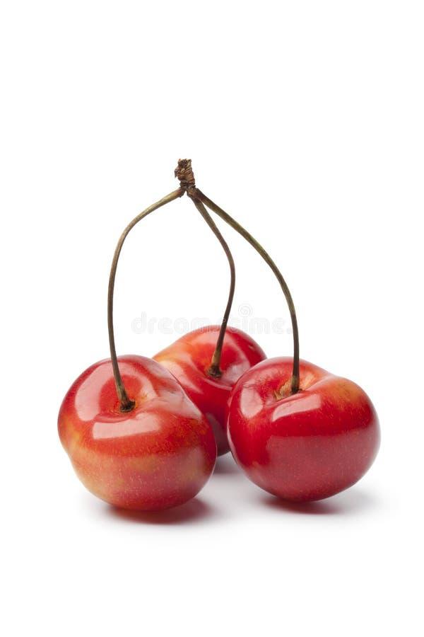 空白的樱桃 免版税图库摄影