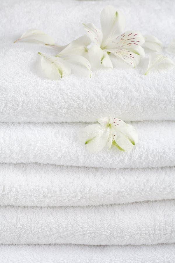 空白的毛巾 库存图片