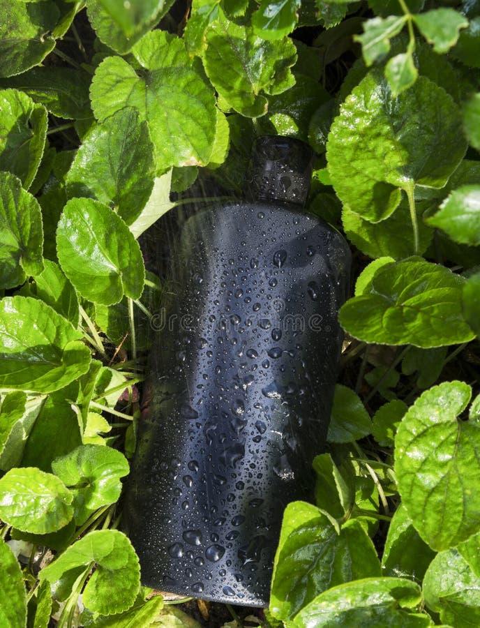空白的瓶垂直的射击在绿草的 自然护发产品的大模型 免版税库存照片