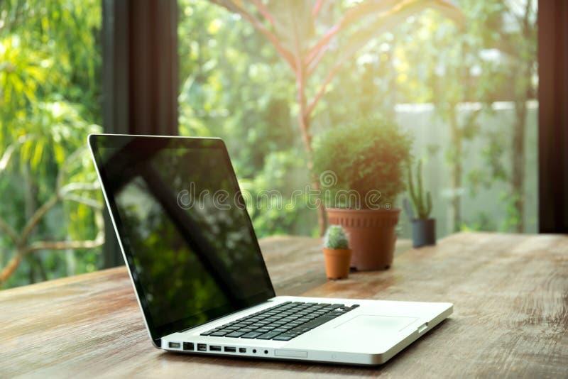 空白的膝上型计算机屏幕和植物木的 免版税图库摄影