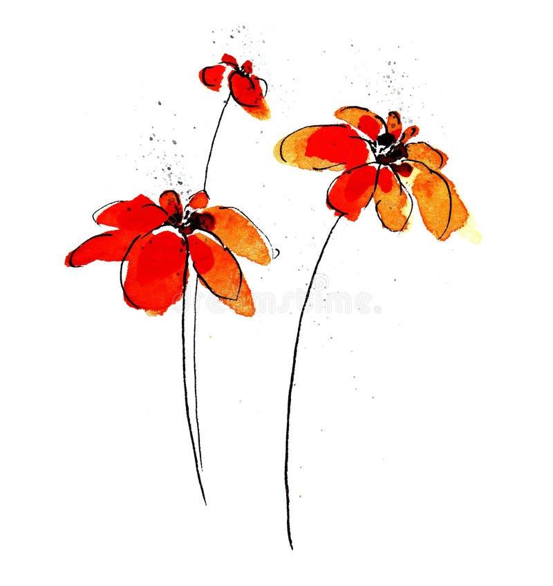 空白的雏菊 向量例证