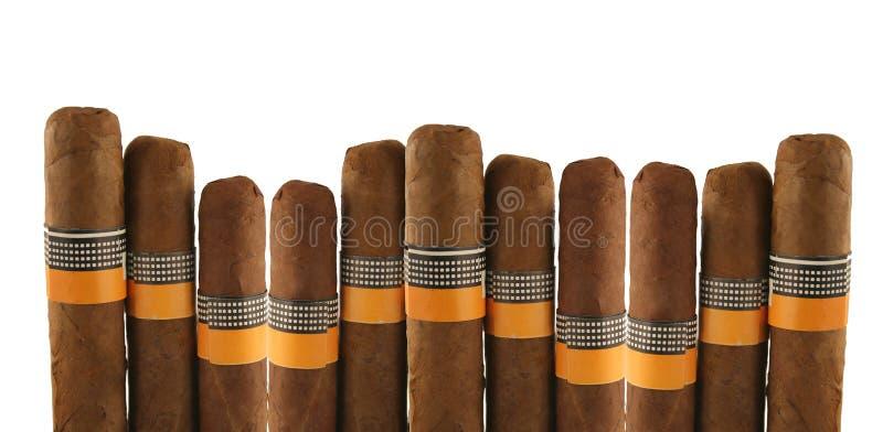 空白的雪茄 库存照片