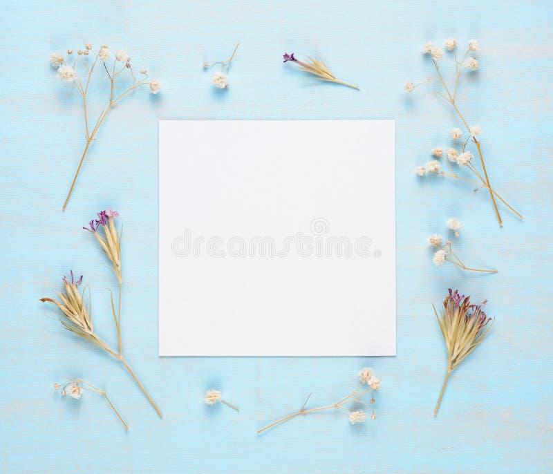 空白的贺卡和干燥花 库存图片