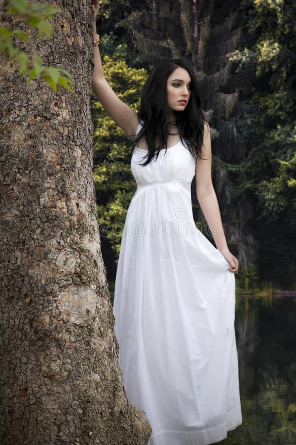 空白礼服的女孩在森林里 库存图片