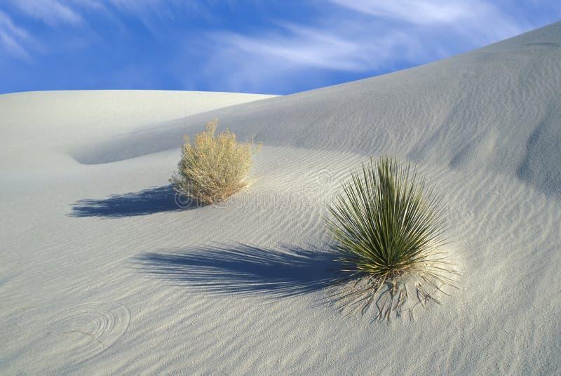 空白纪念碑国家的沙子 图库摄影