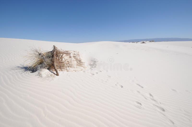 空白纪念碑国家的沙子 库存图片