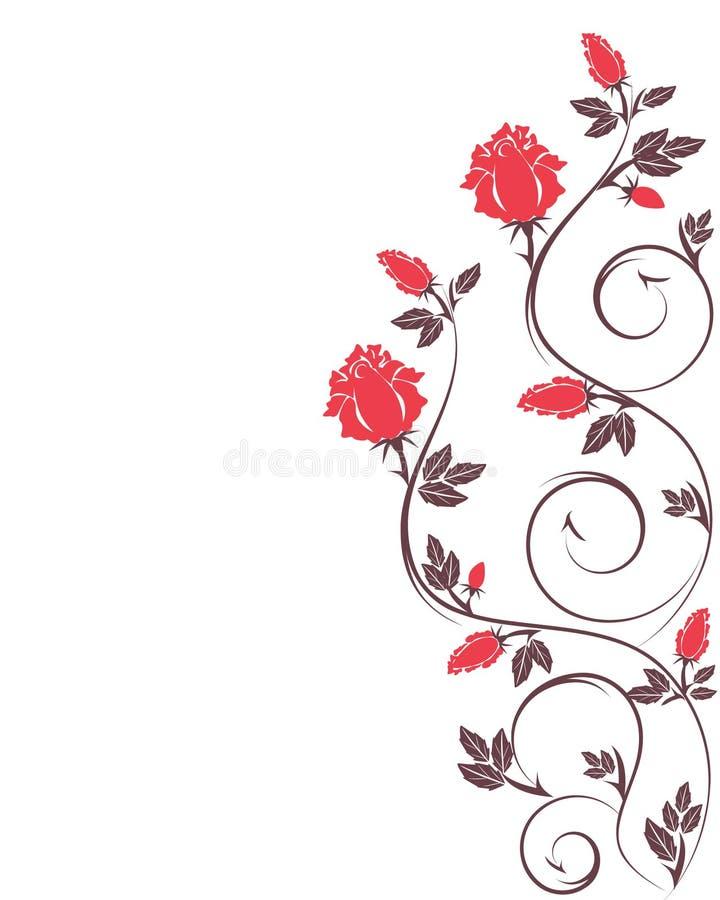 空白装饰查出的红色的玫瑰 皇族释放例证