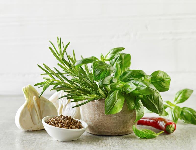 空白香葱新鲜的草本查出的香料 库存图片