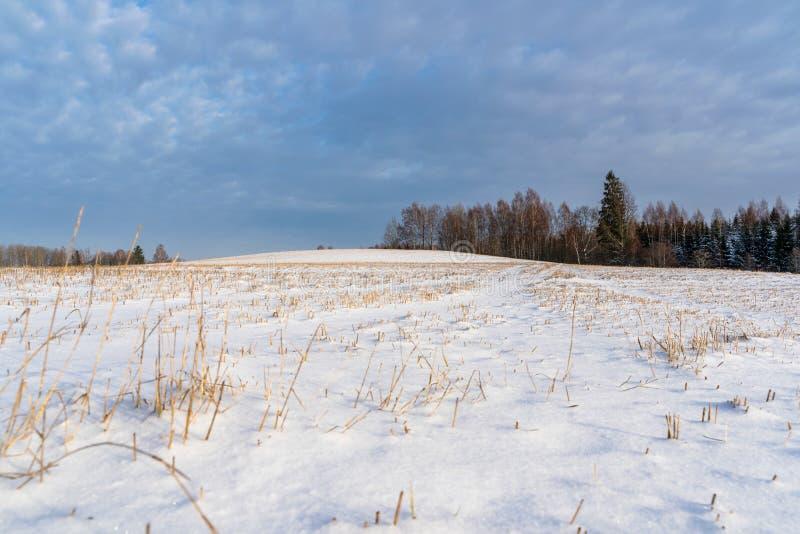 空的乡下风景在与报道地面,抽象背景的雪的晴朗的冬日用深刻的神色 库存图片