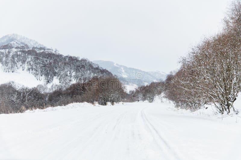 空的山柏油路在用雪包括的冬天在一阴天 驾驶在冬天冰的一辆汽车的概念和 库存图片