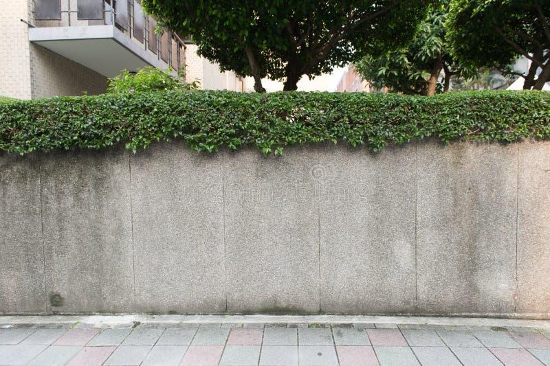 空的有仓库砖墙的难看的东西都市街道 库存图片