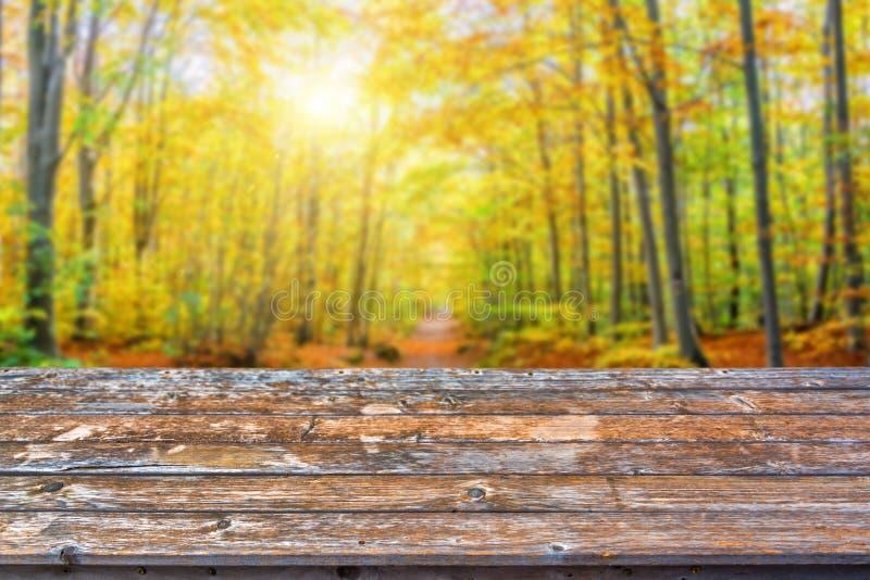 空的木台式,晴朗的森林在秋天背景中,立即可用为您的产品显示  免版税图库摄影