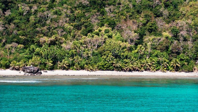 空的热带海滩和豪华的绿色植被 免版税库存照片