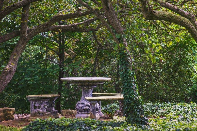 空的石桌在树和叶子机盖下  库存图片