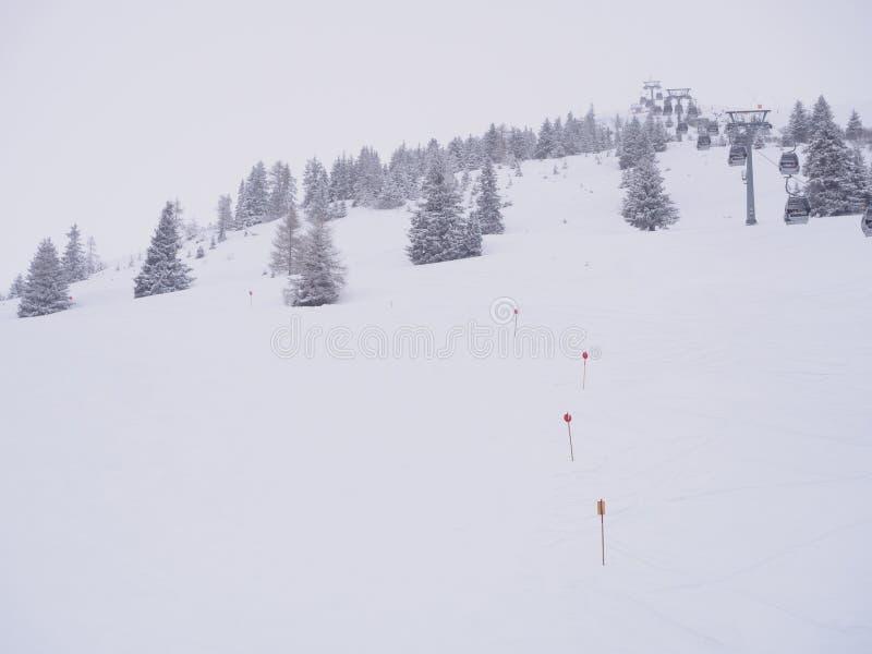空的粉末滑雪滑雪道 库存照片