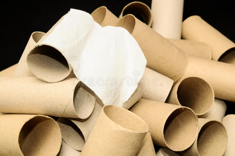 空的纸卷洗手间 库存照片