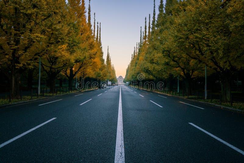 空的路在有树的城市在autum 免版税库存图片