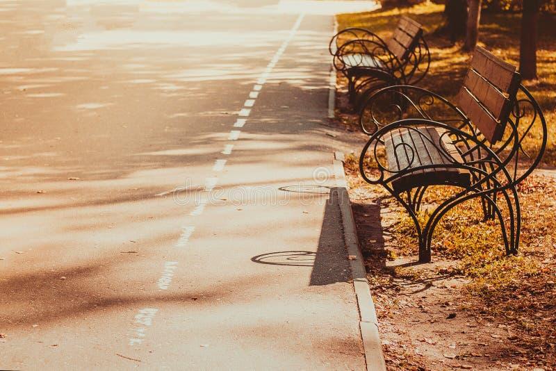 空的长凳在秋季公园 免版税库存图片