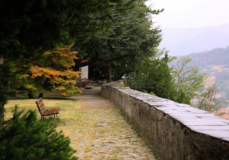 空的长凳在面对城市视图的公园 库存照片
