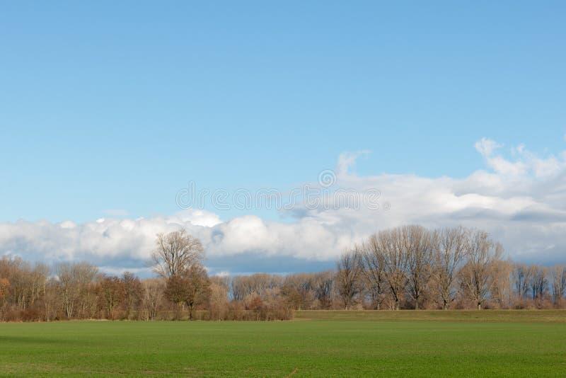 空的领域在冬天在乡下 自然在弗兰肯塔尔-德国 免版税库存照片