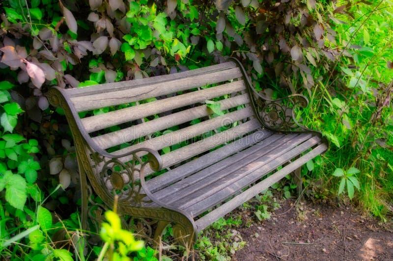 空置庭院长凳 免版税图库摄影