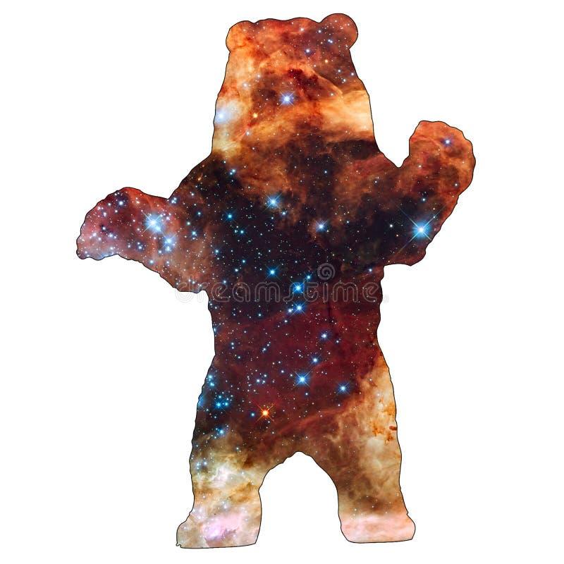 空间动物熊 库存例证