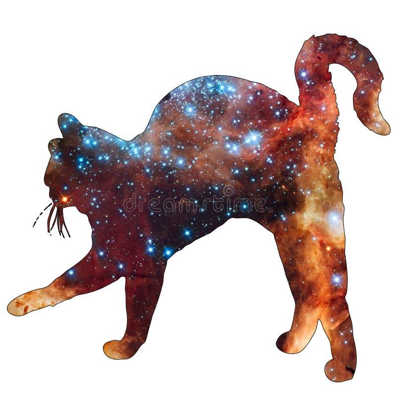 空间动物猫 向量例证