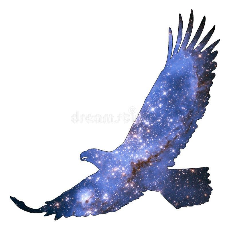 空间动物老鹰 向量例证
