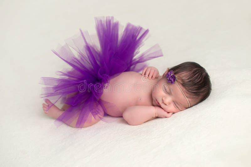 穿一件紫色芭蕾舞短裙的新出生的婴孩 免版税库存图片