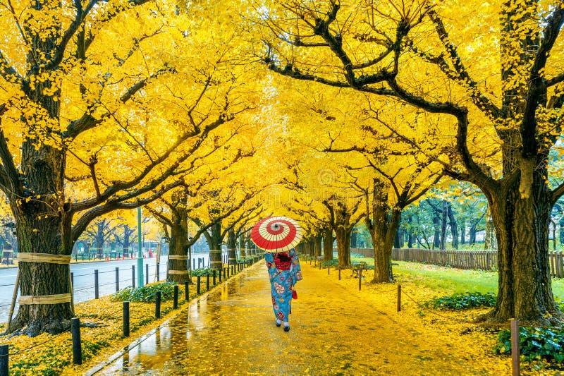 穿日本传统和服的亚裔妇女在黄色银杏树树行在秋天 秋天公园在东京,日本 免版税图库摄影