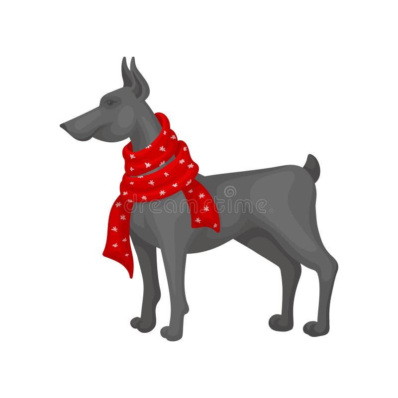 穿温暖的红色围巾的大灰色狗 家畜 圣诞节礼品 平的传染媒介设计 库存例证