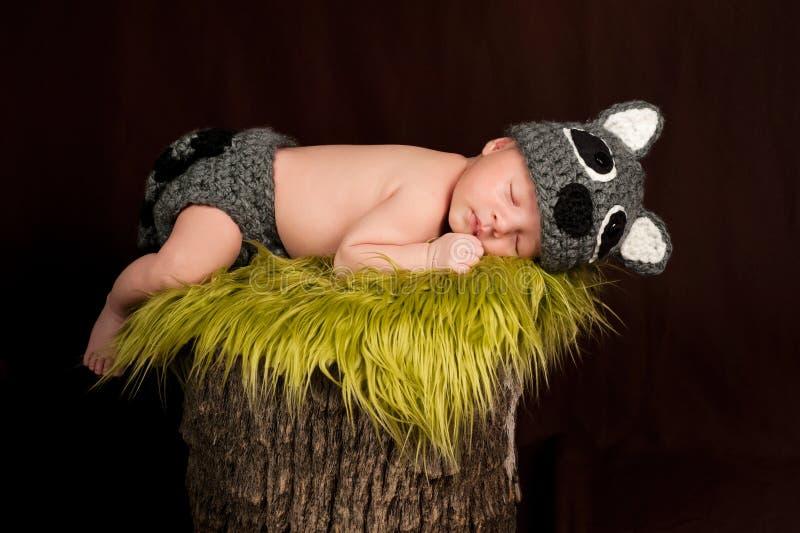 穿着浣熊服装的休眠的新出生的男婴 库存照片