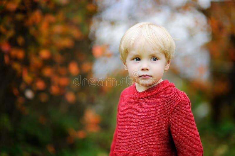 穿红色毛线衣的时髦的男孩 免版税图库摄影