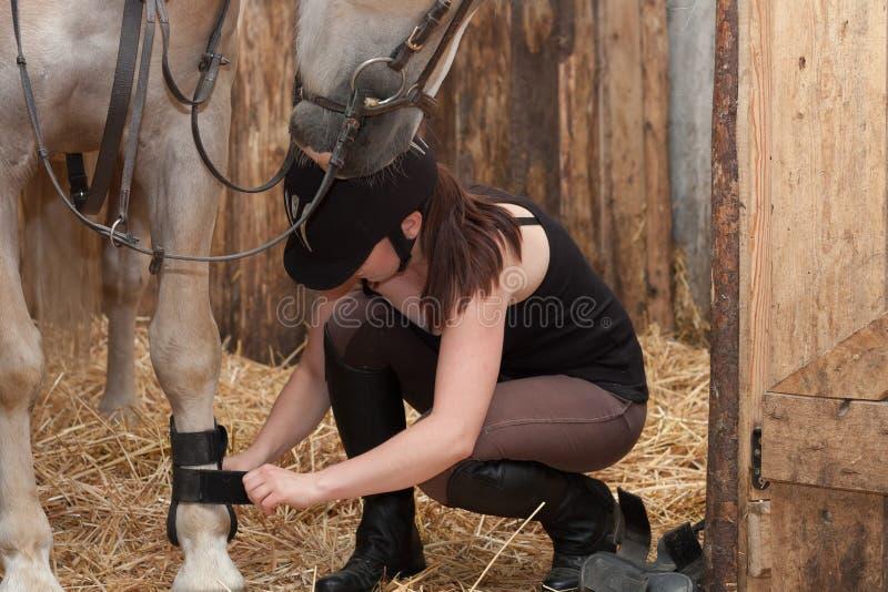 穿线在她的马的少妇护腿在槽枥 免版税库存图片