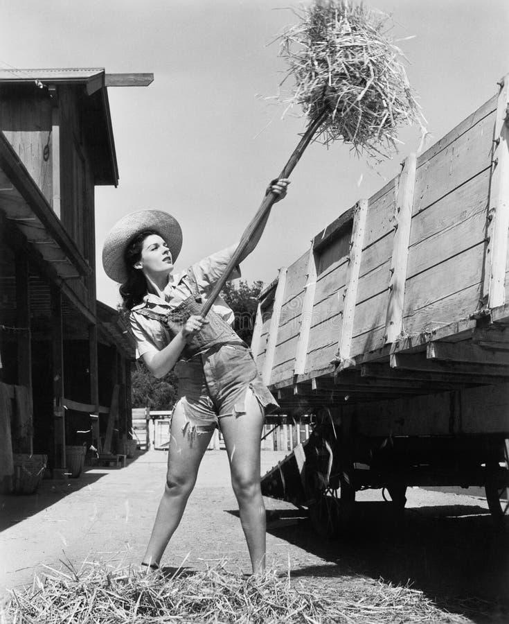 穿被切除的牛仔裤和工作在农厂投球干草的少妇入无盖货车(所有人被描述不是更长的生活a 库存照片