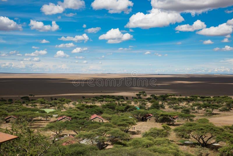 穿越塞伦盖蒂,坦桑尼亚,非洲 库存图片