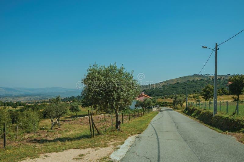 穿过与农场和树的多小山风景的路 图库摄影